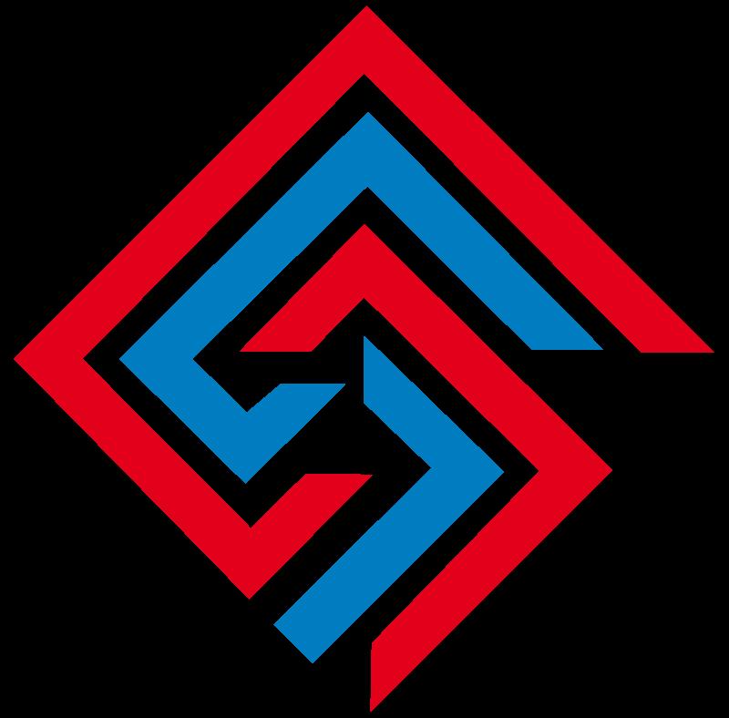 Logo New System Srl